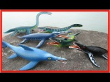 Learn Prehistoric Sea Animals Names Animal Planet Collection Beach Animals Kids Video