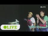 170821 Olive TV