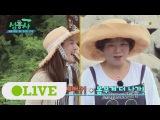 170828 Olive TV