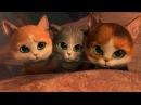 Кот в сапогах и три котёнка! Мультик