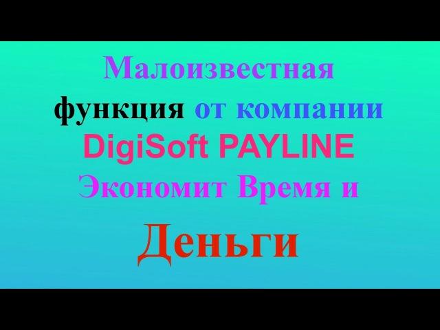 Малоизвестные фишки Digisoft Payline