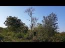 Seca stabla badema 20171002 162335