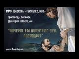 Шелудько Дмитрий -