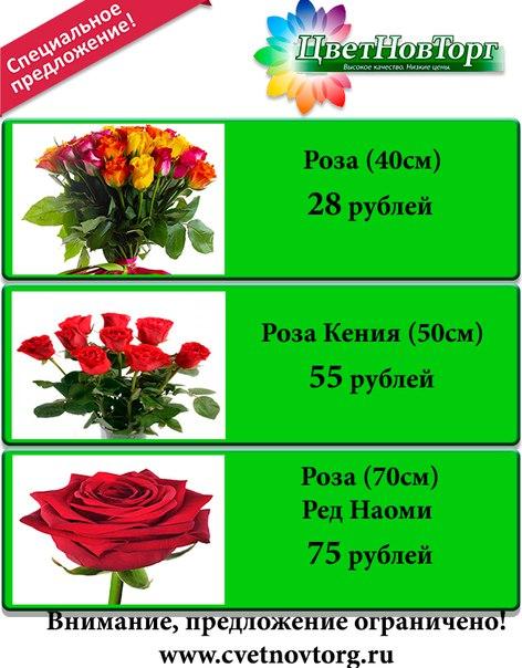 Великий новгород цветы доставка