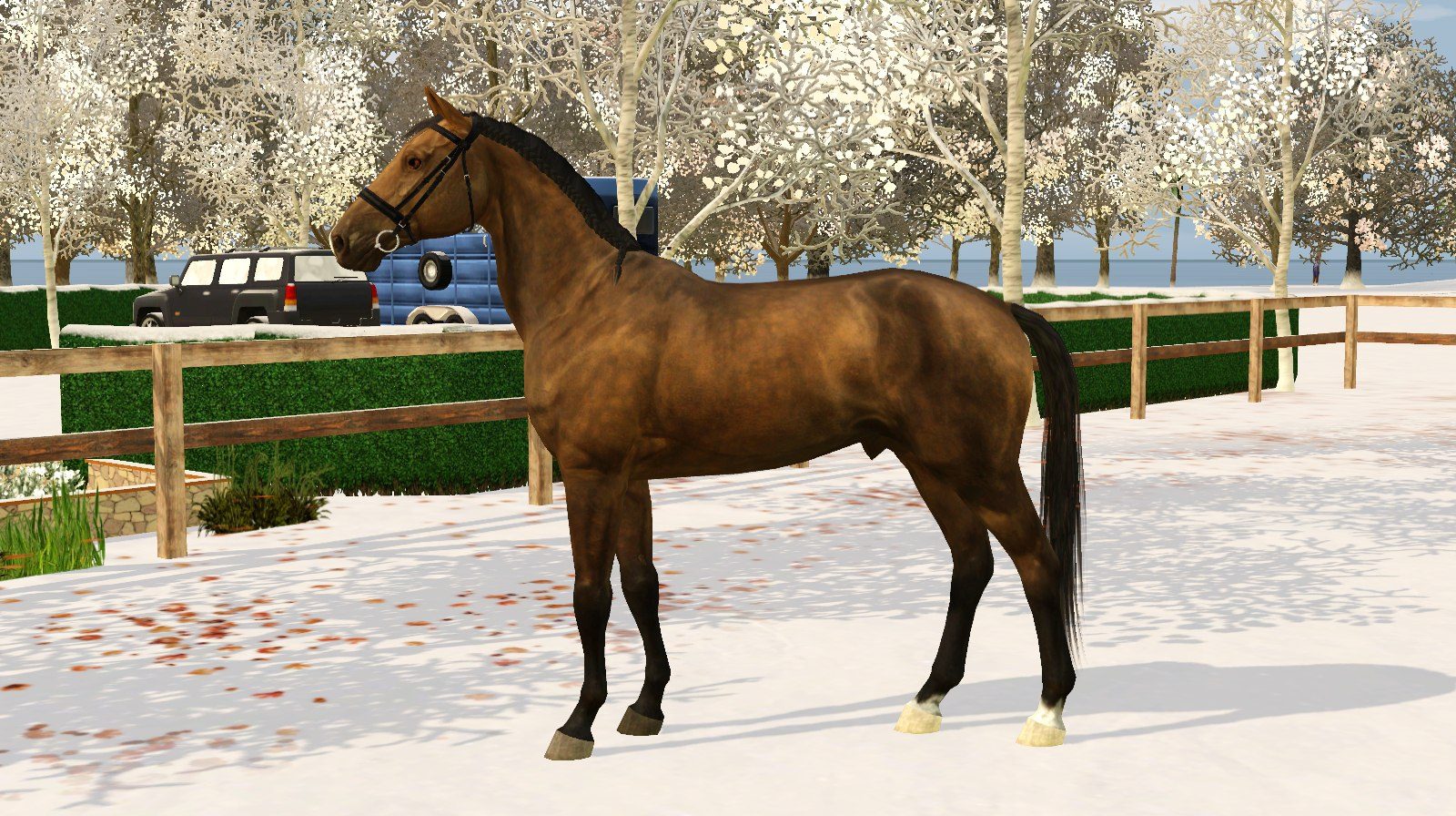 Регистрация лошадей в RHF 2 - Страница 4 9J4ZjWx57H8