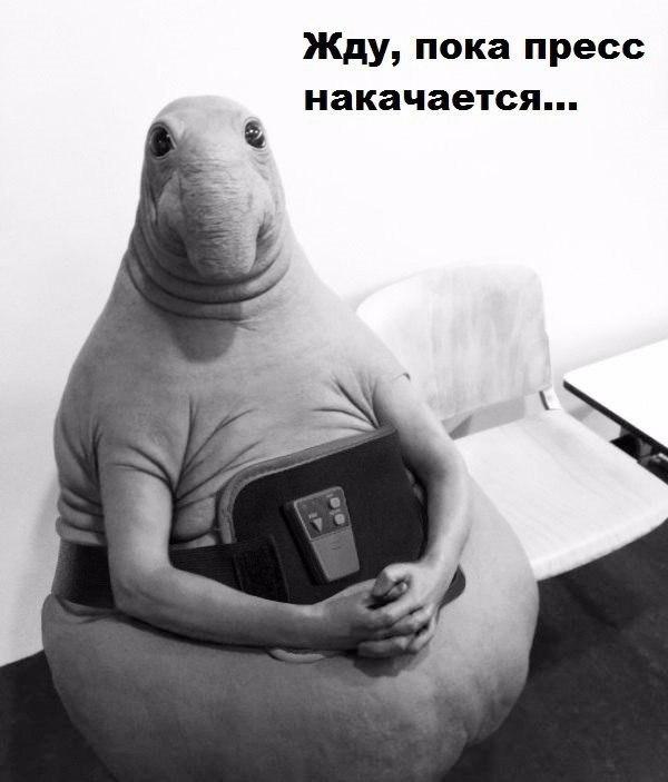 Александр Салов |