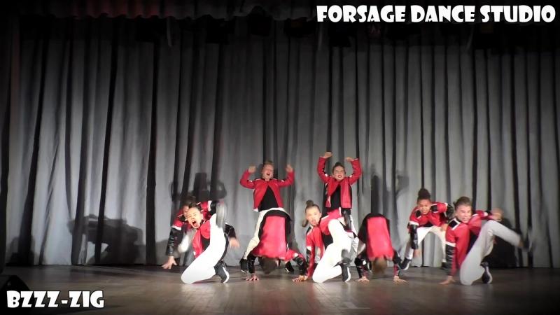 FDS. Отчетный концерт. команда BZZZ ZIG. 28.12.2016