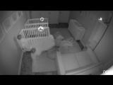 Родители близнецов не поверили, чем их дети занимаются ночью когда все спят. ког