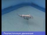 Робот-рыба на Arduino