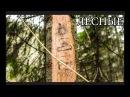 ЕЛОВЫЙ БАРОМЕТР СВОИМИ РУКАМИ | Bushcraft Barometer