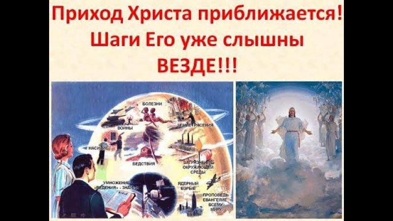 О царе сбываются пророчества Апокалипсиса и пророка Даниила!