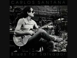 Santana - Blues For Salvador - 09 - Blues For Salvador