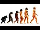 Теория эволюции Дарвина Естественный отбор Рассказывает Кирилл Юрьевич Еськов