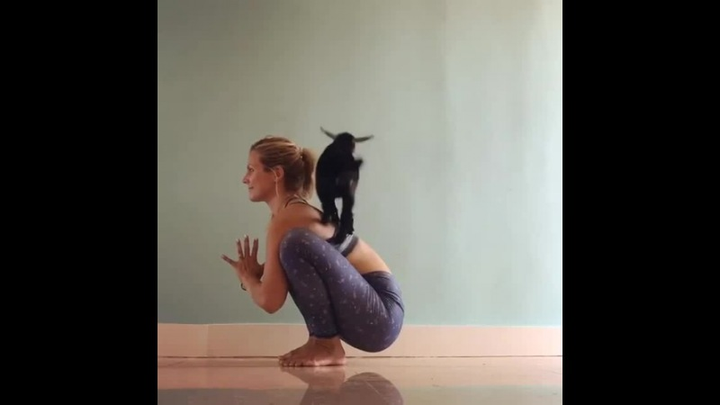 A Little Beat Yoga