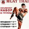 Федерация Тайского бокса Республики Калмыкия