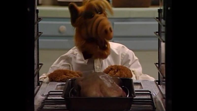 Alf Quote Season 2 Episode 1 _Альф взорвал кухню