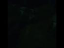 Дембельский поезд🚂 29.06.17.