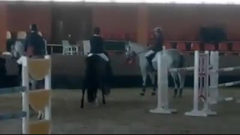 Уже два дня спортсмены и лошади КСК