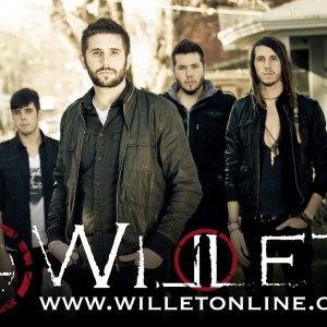 Willet