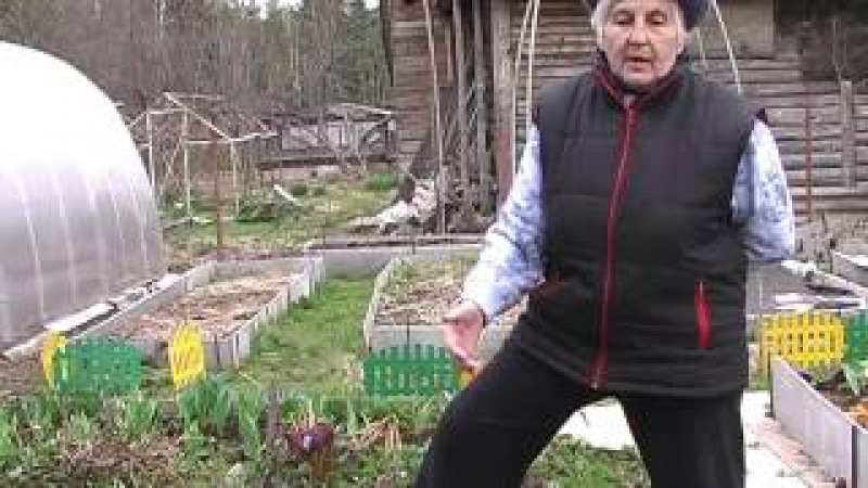 Галина Александровна Кизима. Огород без хлопот. 1