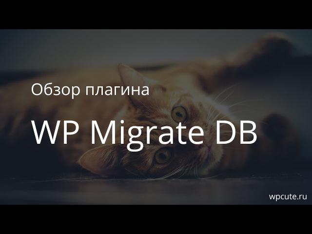 Обзор плагина 1 WP Migrate DB v0.9. Переносим базу данных WordPress с одного домена на другой