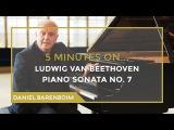 5 Minutes On... Beethoven - Piano Sonata No. 7 (D major) Daniel Barenboim subtitulado