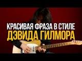 Красивая фраза в стиле Дэвида Гилмора - Уроки игры на гитаре Первый Лад