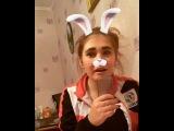 _ms.hamster_ video
