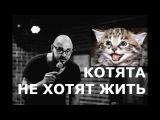 Алексей ФЕДЯЕВ — Котята не хотят жить (stand-up)