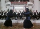 The Avenging Force: Kendo Fight
