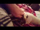 Адар Бэт и режущиеся зубы