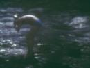 1994 год турклуб 37 меридиан.Перевал Дятлова, карстовый лог Иорданского
