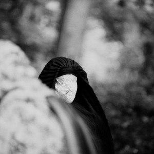 Wooden Veil