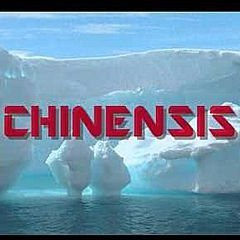 Chinensis
