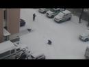 Петербургских полицейских засняли за игрой в снежки на службе