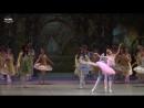 Балет Спящая Красавица - Мари Ито