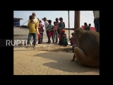 India Monkey adopts adorable stray puppy