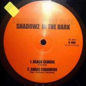 Shadowz In Da Dark
