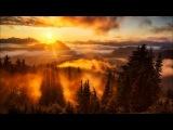 SizzleBird - Morning Light