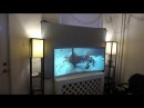 NEW CURVED PROJECTION SCREEN DESIGN TEST DEMONSTRATION FOR THE SILVER DIAMOND
