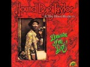 HOUND DOG TAYLOR let's get funky 1974
