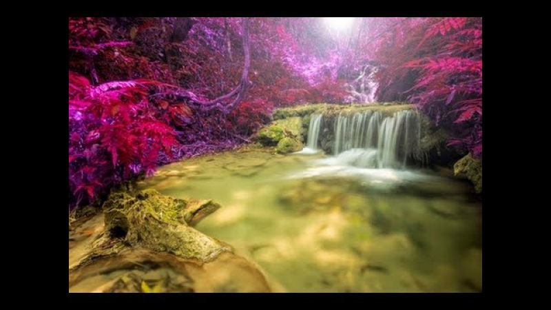 1 Hour Relaxing Guitar Music: New Age Guitar Music; New Age music; relaxing Music 🎸228