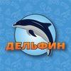 «Дельфин»