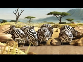 Что, если бы все животные были круглыми