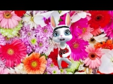 Красивое поздравление с 8 марта! Музыкальный подарок на международный женский день ZOOBE Муз Зайка