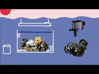 морской аквариум без подмен и лишнего оборудования 5 течение и первые жители