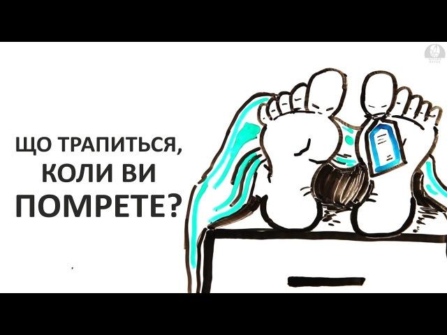 Що трапиться, коли ви помрете [AsapScience]