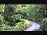 Barry Ryan - Honda V-tec Escort 1600
