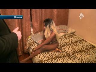 В Москве накрыли бордель с проститутками-полиглотами