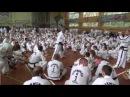 Часть1 Таеквон-До ИТФ Семинар Jurek Jedut Jaroslav Suska 2017 Taekwon-Do ITF Seminar